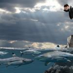 dangers-of-panic-selling-warren-buffett