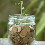 Plant_Growing_in_Coins1